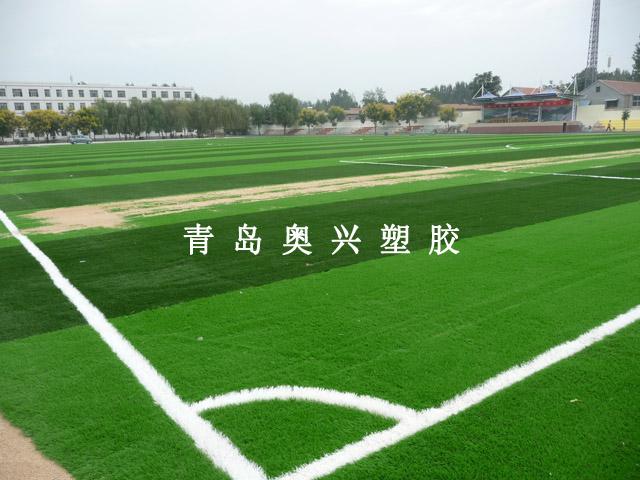 人造草坪足球场_人造草坪_青岛奥兴塑胶铺装有限公司